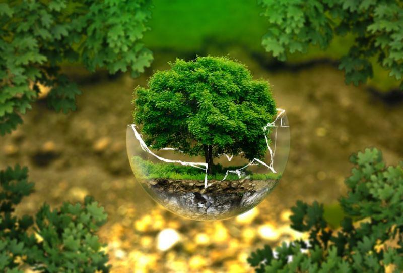 bagno ecologista idee